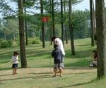 清里の森パークゴルフ場001